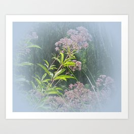 Uncommon Beauty Art Print