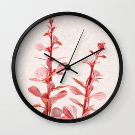 SOFT RED PLANT - Berberis #Art #Society6 #Decor #1 Wall Clock