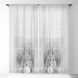 Squirrel 2 - Black & White Sheer Curtain