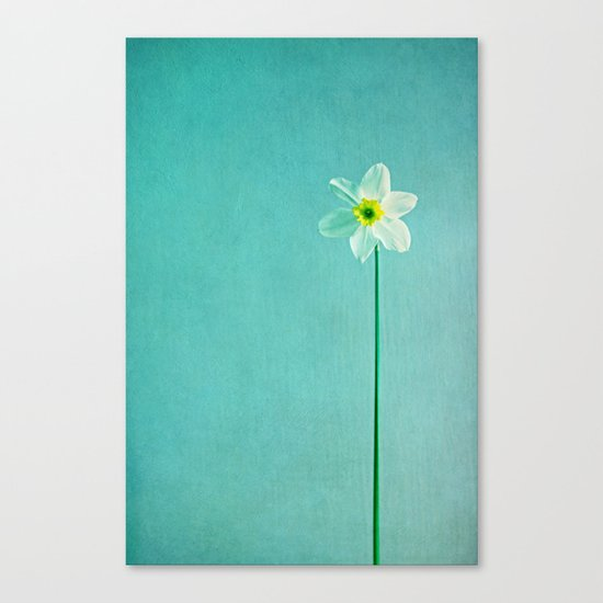 narcisse Canvas Print