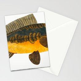Royal-Carp (Rex Cyprinorum) from Ichtylogie ou Histoire naturelle generale et particuliere des poiss Stationery Cards