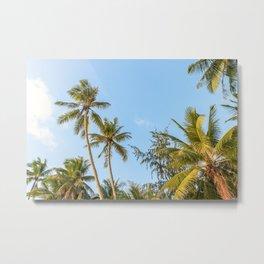 Boracay Palms Metal Print
