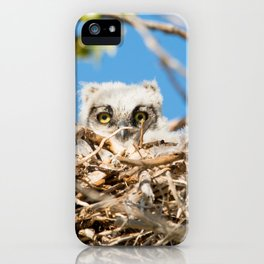 Greathorned Owlet iPhone Case