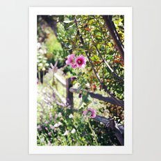 Stroll in the Garden Art Print