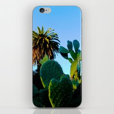 California Spikey Cactus iPhone & iPod Skin