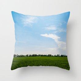 Blue over green Throw Pillow