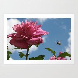 Bumblebee and Summer Flower Art Print