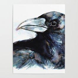 Raven, Watercolor Poster