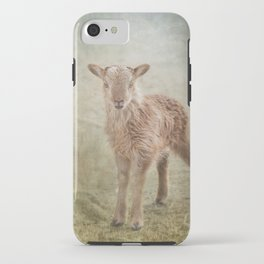 Baby Soay Sheep iPhone Case