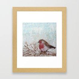 Winter Robin Framed Art Print