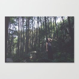 Rising Den Canvas Print