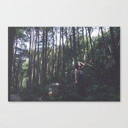 Rising Den Canvas Print