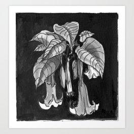 Poisonous Plants: Brugmansia (Angel's Trumpet) Art Print