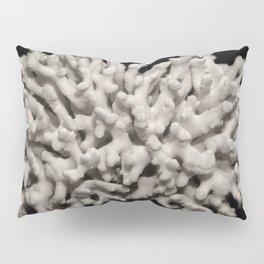 White dried coral branch Pillow Sham