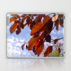 Autumn is in the Air Laptop & iPad Skin