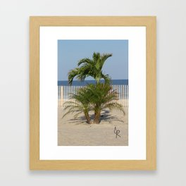 Jersey Palm Trees  Framed Art Print