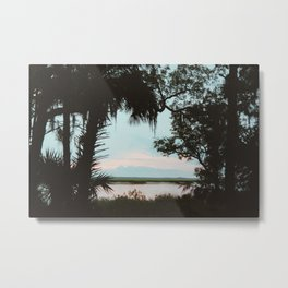 Cumberland Island Metal Print