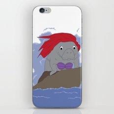Sea Dreams iPhone & iPod Skin