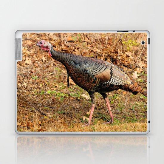 Wild turkey hen Laptop & iPad Skin