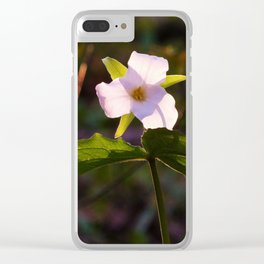 White Trillium Back-lit by the Setting Sun Clear iPhone Case