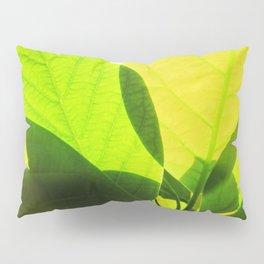 Avocado Leaves Pillow Sham