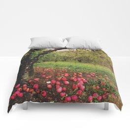 baller Comforters