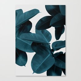 Indigo Blue Plant Leaves Canvas Print