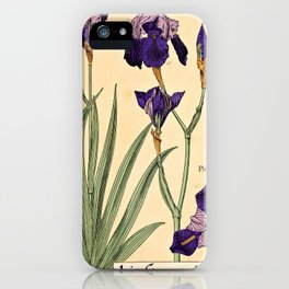 Maurice Verneuil - Iris germanique - botanical poster iPhone Case