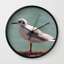 mouette Wall Clock