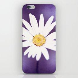 Purple Yellow Photography, Daisy Flower Art, Purple Violet Nature Photo Print iPhone Skin