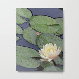Full Bloom Lily Metal Print