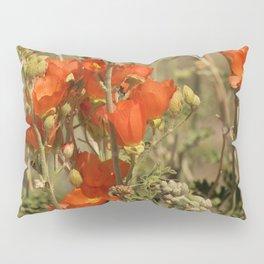 Desert Wildflower - 4 Pillow Sham