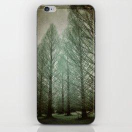 winter dream iPhone Skin