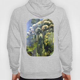 Tarairi Forest Morning Hoody