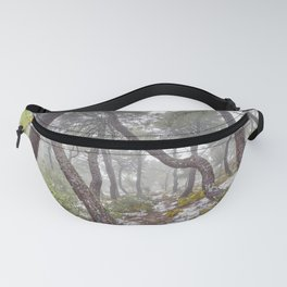 Magic forest. Into the foggy woods. Yesterday Fanny Pack