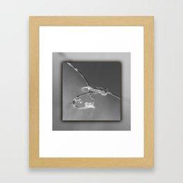 Rope in water Framed Art Print