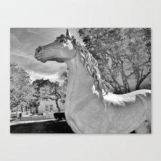 Magick horse Canvas Print
