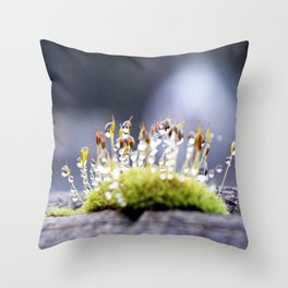 Maco photography Moss Water Drop Rain drops dew Green nature photography Throw Pillow