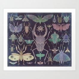 Entomologist's Wish (The Neon Version) Art Print