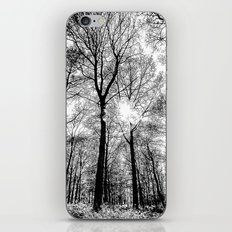 The Forests Sketch iPhone & iPod Skin