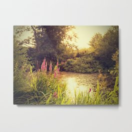 Golden end of a day Metal Print