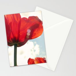 Flower Photography, Deep Ruby Red Art Print, Autumn, Home Decor Nursery Decor  Nature 8x10 Stationery Cards