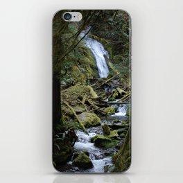 Marymere Falls iPhone Skin