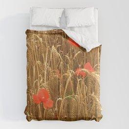 Daubs of poppy Comforters