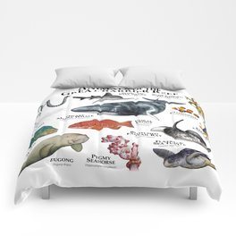 Animals of the Great Barrier Reef Comforters