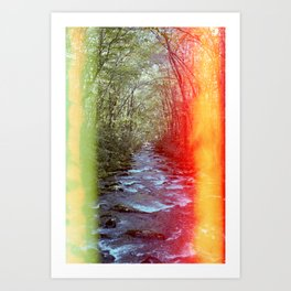 Light leak by the Creek - Great Smoky Mountains - Film Photograph Art Print