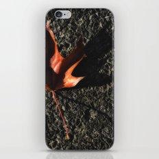 red leaf. iPhone & iPod Skin