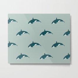 Orca (Aquatic) Metal Print