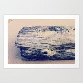 driftwhale Art Print