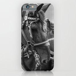 Horse Photography | Animal Art | Mammal | Nature | Wildlife | Black and White Stallion iPhone Case